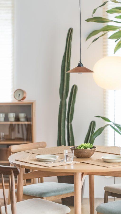 Pflanzen Kakteen skandinavische Wohndesign Nordic Butik