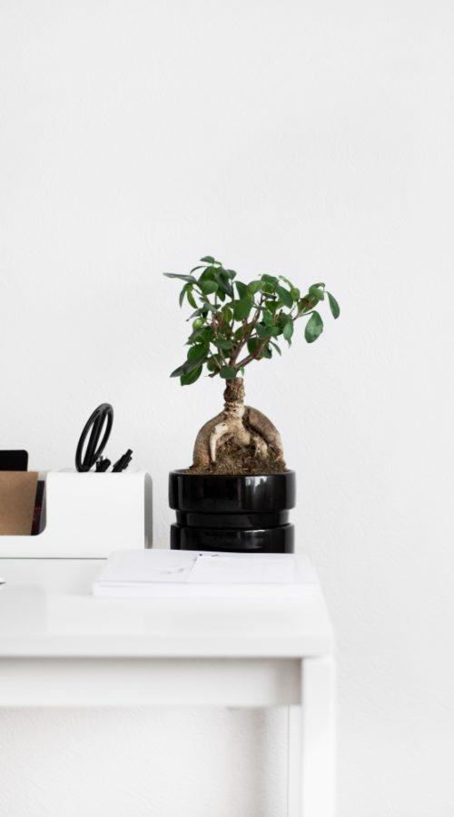 Wohnaccessoires Home-Office Nordic Butik