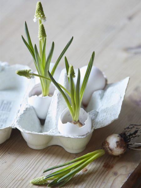 Osterdeko mit Blumen und Eier