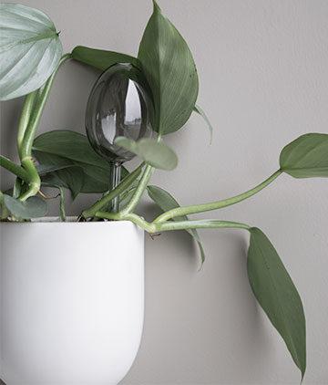Vasen und Blumentopf Nordic Butik